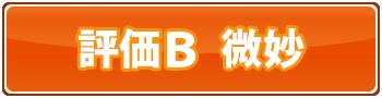 育毛マニュアル評価B